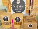 FurBabies Bakery hopes to open its new Plano location by the end of February. (Courtesy FurBabies Bakery)