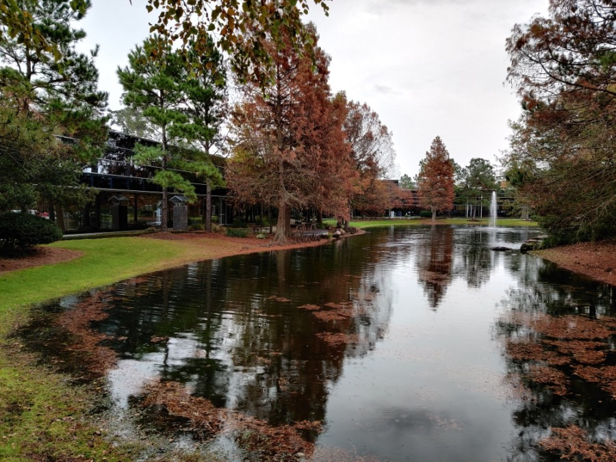 The Woodlands area houses millions of square feet of office and other commercial space. (Ben Thompson/Community Impact Newspaper)