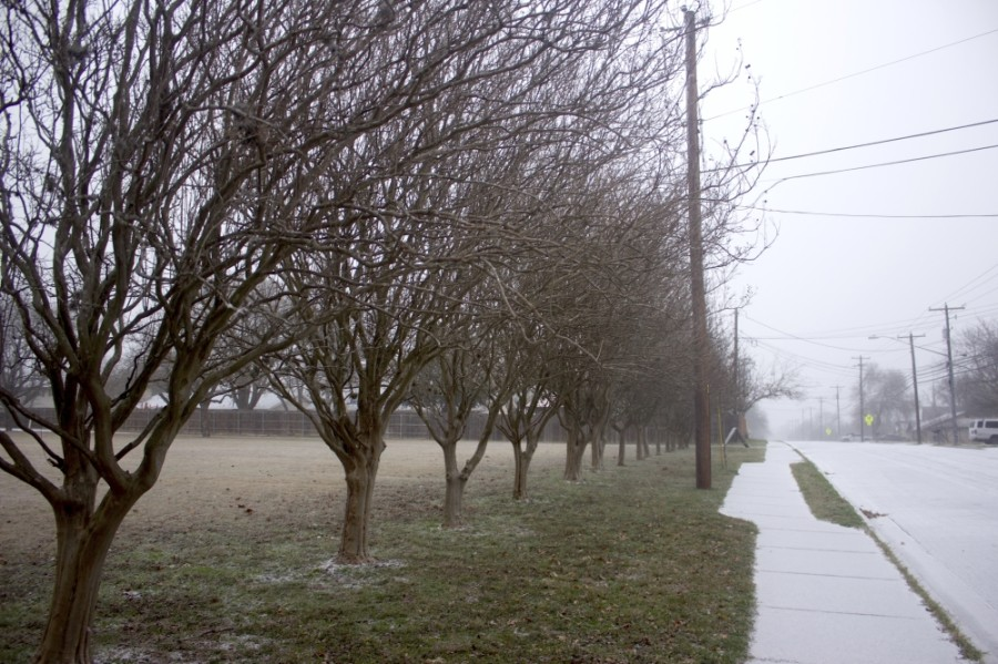 Snow fell in Austin Feb. 14 as temperatures dropped to lows unseen since 1989. (Jack Flagler/Community Impact Newspaper)