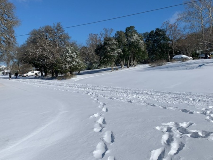 Ambulance responses may take longer due to road conditions in Buda, and residents are advised to stay home. (Heather Demere/Community Impact Newspaper)