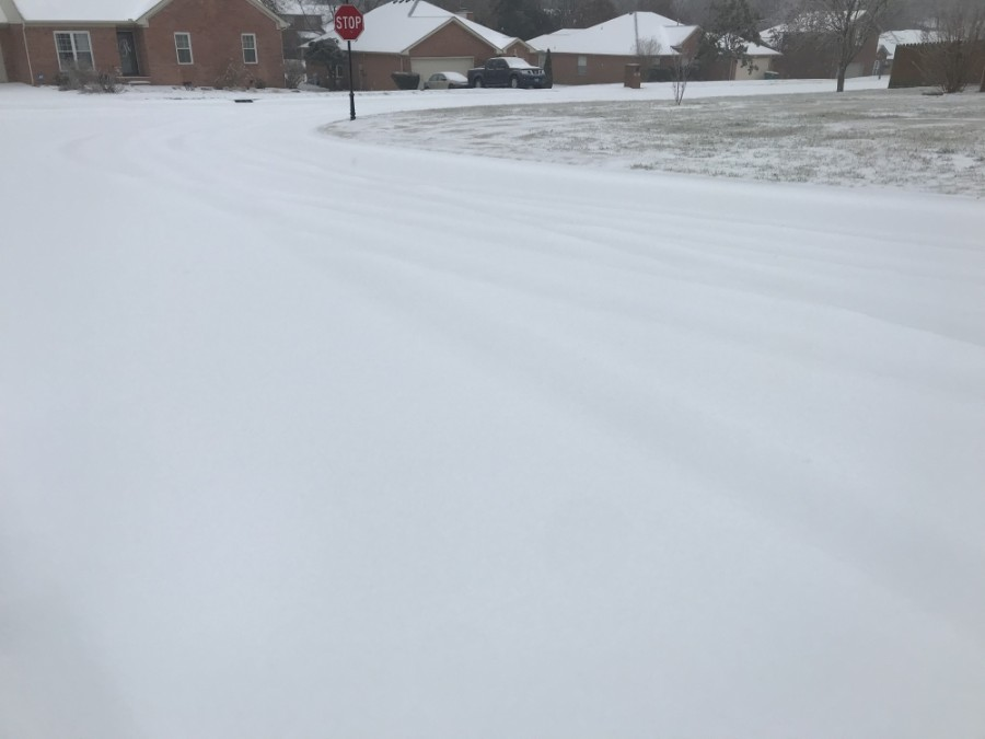 Williamson County has seen icy conditions over the last 24 hours. (Wendy Sturges/Community Impact Newspaper)