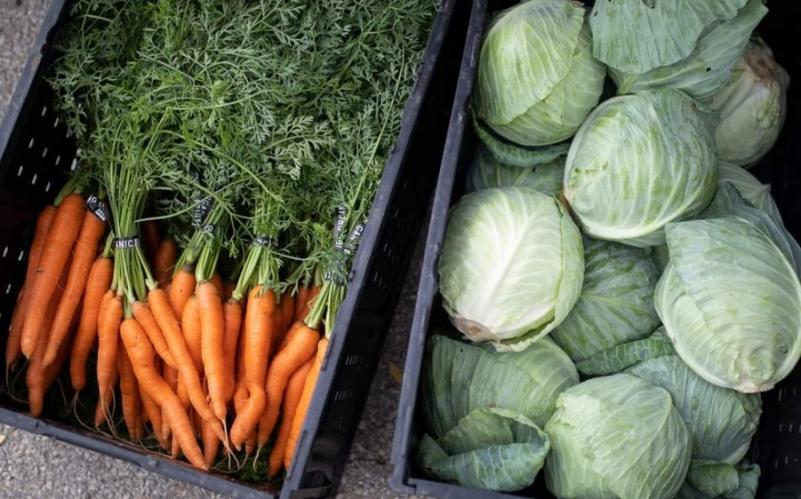 The Texas Farmers' Market will open its two Austin area locations at Lakeline Mall and Mueller the weekend of Feb. 20-21. (Courtesy Texas Farmers' Market)
