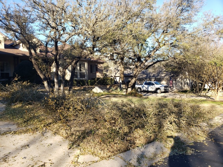 The city of Georgetown has organized tree limb cleanup for residents. (Ali Linan/Community Impact Newspaper)