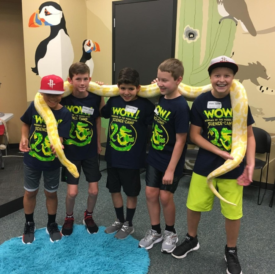 WOW! Science Camp students interact with animals such as Bubba, an albino Burmese python. (Photos courtesy WOW! Science Camp)