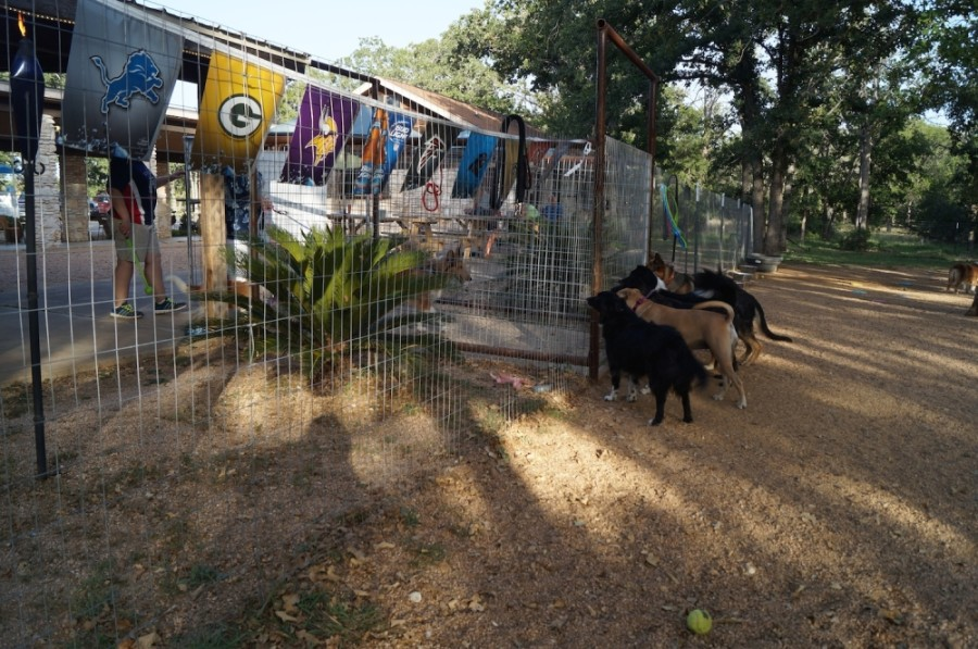 A proposed commercial development in Lewisville's Northern Gateway would have a dog park component under the latest approved plans, similar to this Dog House Drinkery and Dog Park concept in Leander. (Community Impact Newspaper file photo)