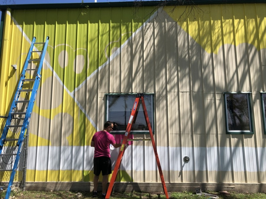 Jason Tetlak was chosen by the Georgetown Animal Shelter and Georgetown Arts and Culture Board to design and paint the new Georgetown Animal Shelter mural. (Fernanda Figueroa/Community Impact Newspaper)