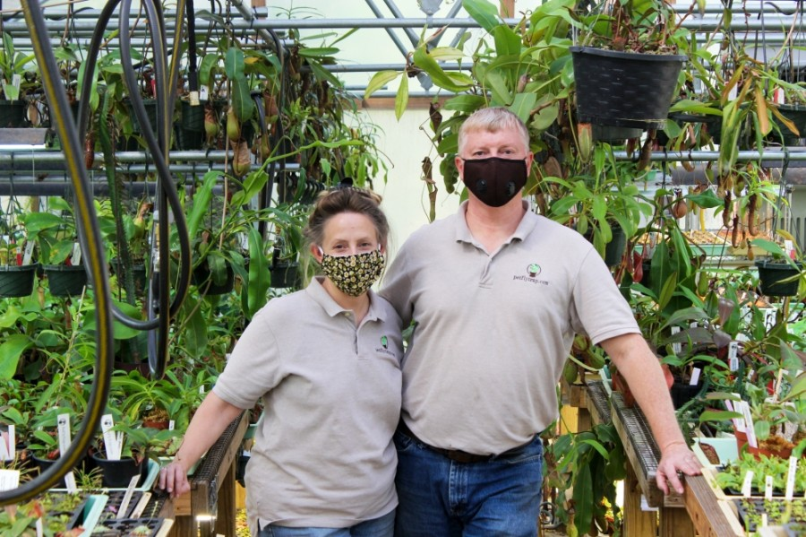 The Howletts tend to more than 20,000 carnivorous plants daily at Pet Fly Trap, which is operated from the backyard and greenhouse of their Spring home. (Hannah Zedaker/Community Impact Newspaper)