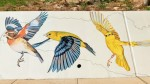 Artists with Ink Dwell Studio created the mural, which depicts birds that migrate seasonally to the Houston area. (Courtesy Anthony Rathbun/Houston Parks Board)