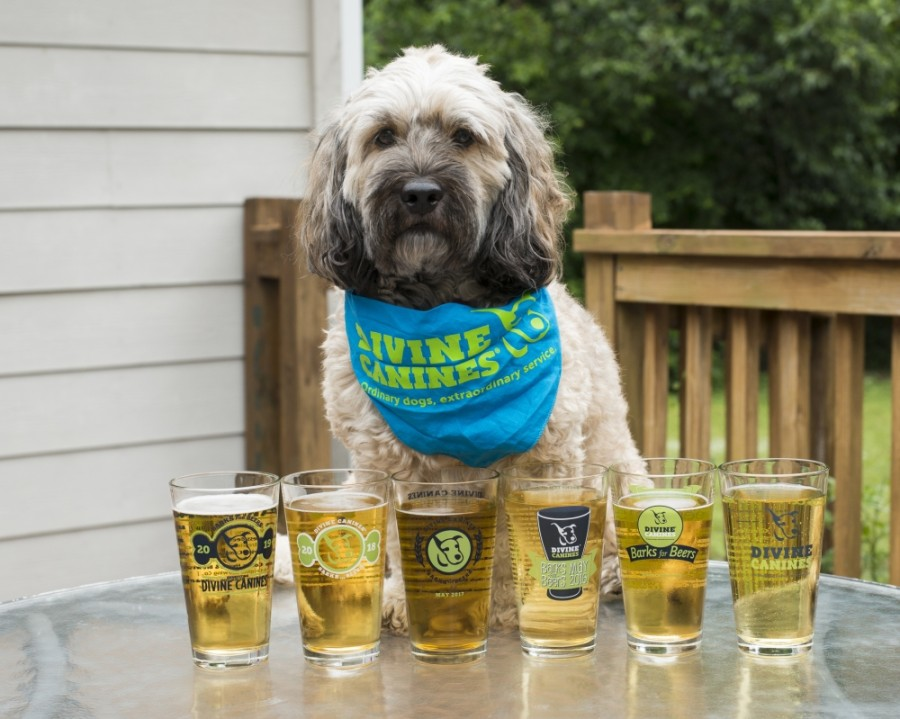 The Barks for Beers fundraiser will return to Central Texas in May. (Courtesy Divine Canines)