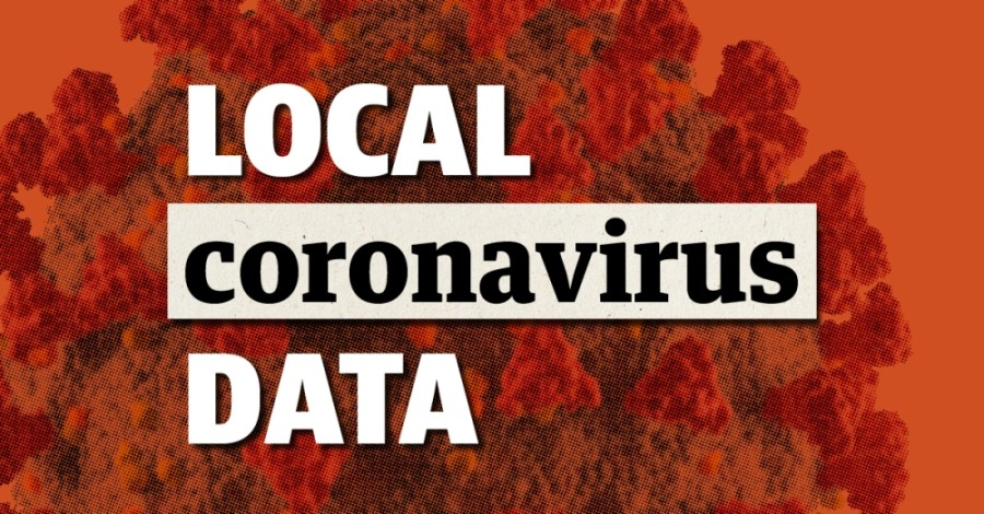 See a breakdown of COVID-19 cases, vaccinations and more local data. (Community Impact Newspaper staff)