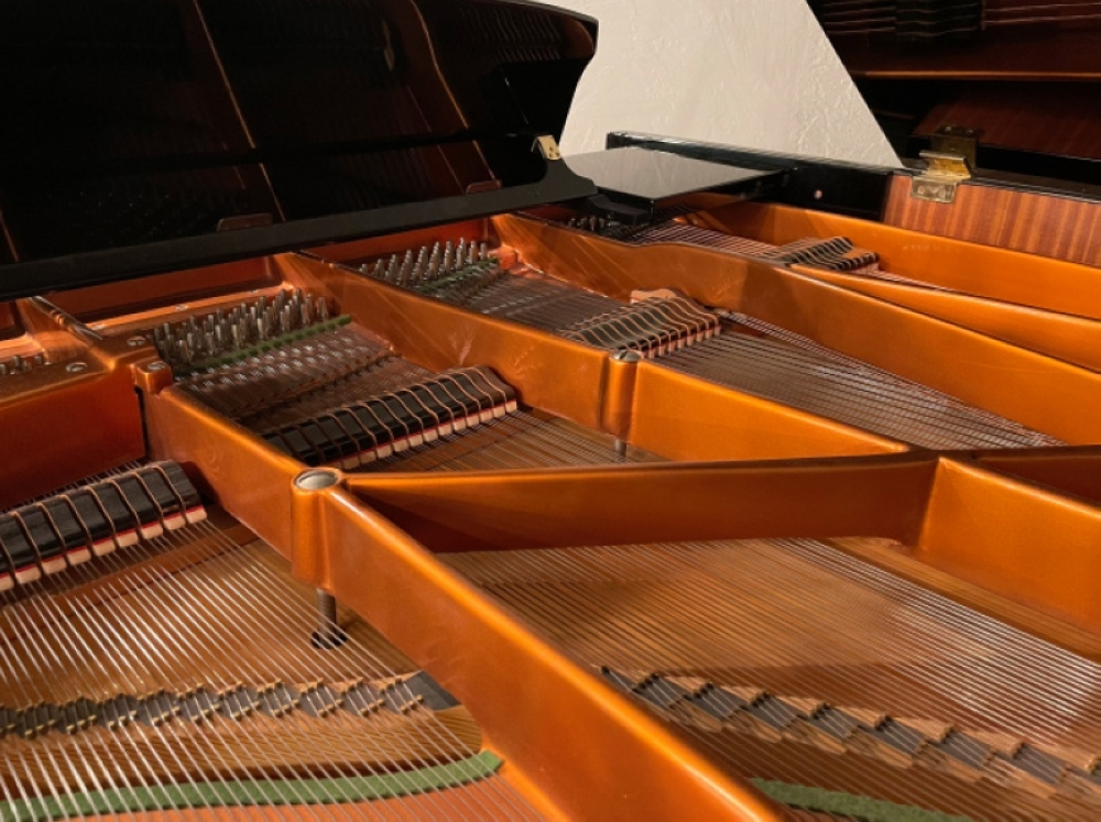 Owner Karali Hunter said many things fell into place when the conservatory was starting, including getting the 9-foot-1-inch Bösendorfer Concert Grand piano. (Katelyn Reinhart/Community Impact Newspaper)