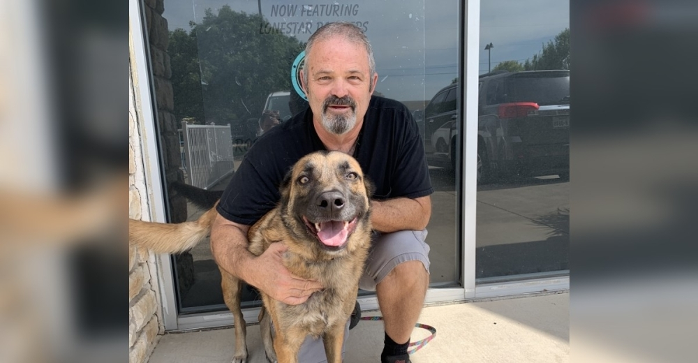 Alan Spicer named his Keller business after his dog, Roscoe. (Nicole Barron/Community Impact Newspaper)