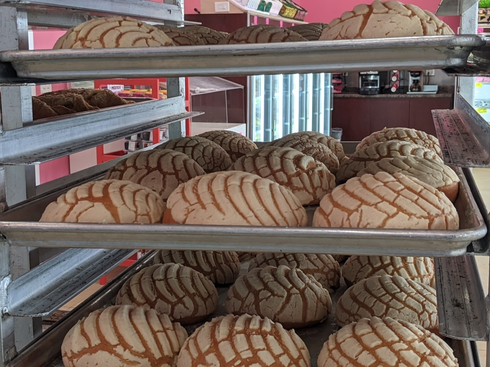 Conchas ($0.60), which translates to seashell from Spanish, are made from a combination of bread and cookie dough with a shell-shaped texture. (Jishnu Nair/Community Impact Newspaper)