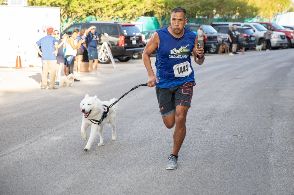Nonprofit Spay-Neuter-Inject-Protect San Antonio presents its Race for the Rescues fundraiser, seen here in 2019, on Sept. 25 in Alamo Heights. (SNIPSA)