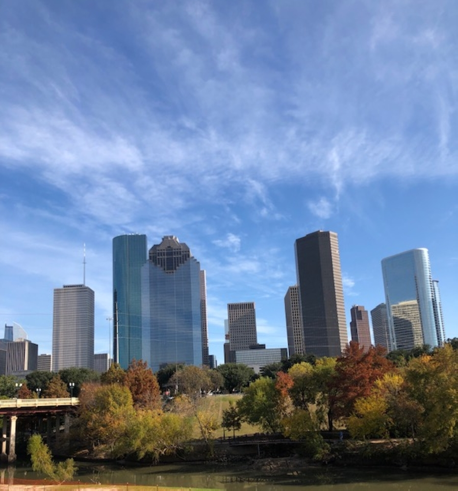 Eleven companies operating across the Greater Houston area have agreed to discuss plans to capture and store carbon dioxide emissions. (Marie Leonard/Community Impact Newspaper)
