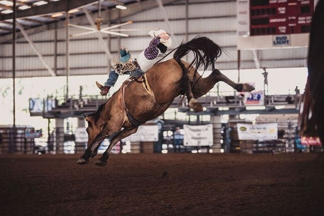 One event to attend this weekend is the Fort Bend County Fair & Rodeo. (Courtesy Fort Bend County Fair & Rodeo)