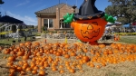 Kyle Center Street Trick-or-Treat will be held Oct. 23. (Courtesy city of Kyle)