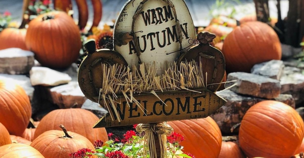 Visitors to The Alley on Bitters will see two straight Saturdays of pumpkin patch activities as well as an Oktoberfest-style event. (Courtesy The Alley on Bitters)