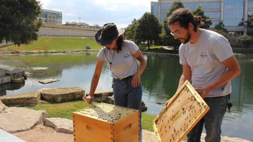 Beekeeper Rock Delliquanti (right) holds the top to a hive as Michelle Winter checks the health of the bees. (Brooklynn Cooper/Community Impact Newspaper)