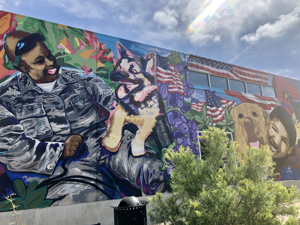 Wag Heaven's mural depicts Nemo, a German Shepherd who served in the U.S Air Force during Vietnam and saved his handlers life on the field of battle. (Brittany Andes/Community Impact Newspaper)