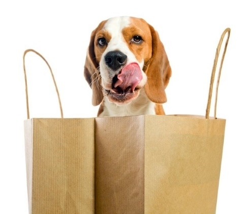 Pet Supplies Plus will offer a range of pet supplies as well as full grooming services for dogs and cats. (Courtesy Pet Supplies Plus)